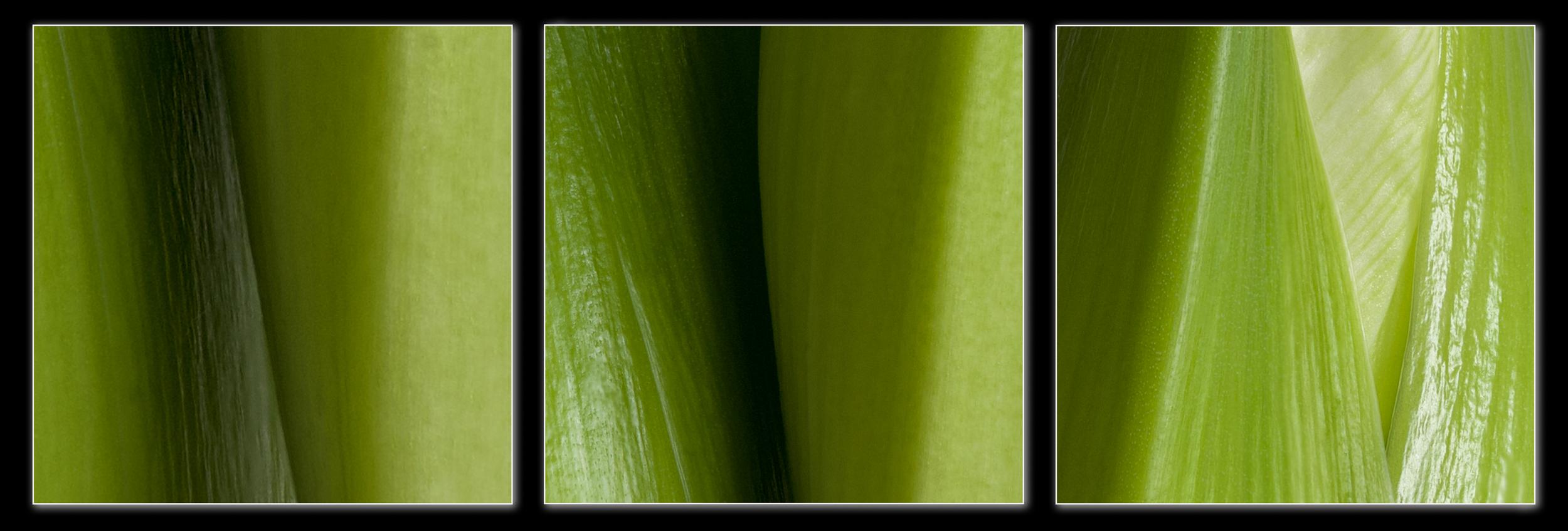 Drie-maal-groen.jpg