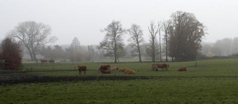 Landschap Twenthe
