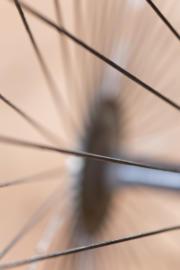Marianne Schrijver-Lievense - Een spaak in het wiel steken
